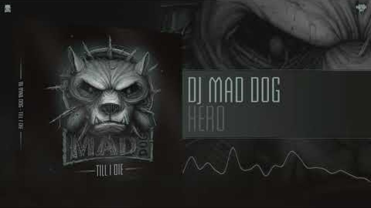 DJ Mad Dog - Hero