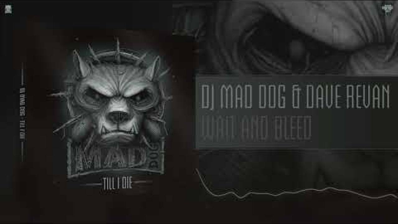 DJ Mad Dog ft. Dave Revan - Wait and Bleed